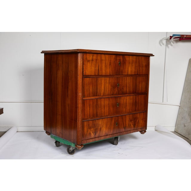 Large 19th Century Biedermeier Commode of Rosewood For Sale - Image 4 of 13