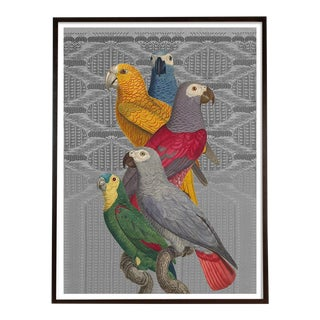 """Les Perroquet"" Parrot Collage Print Antique Birds by Capricorn Press For Sale"