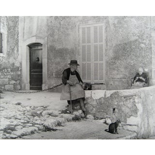 Cat on a Side Street European Scene 1960s Black and White Photograph For Sale