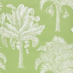 Sample - Schumacher Grand Palms Wallpaper in Leaf