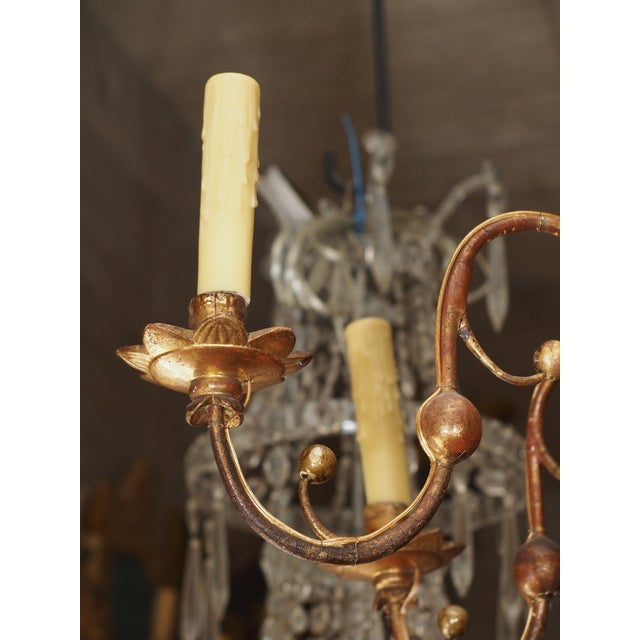 Metal Early 19th Century Italian Giltwood Chandelier For Sale - Image 7 of 9