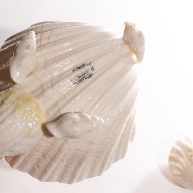 White Belleek Irish Seashell Teapot For Sale - Image 8 of 9