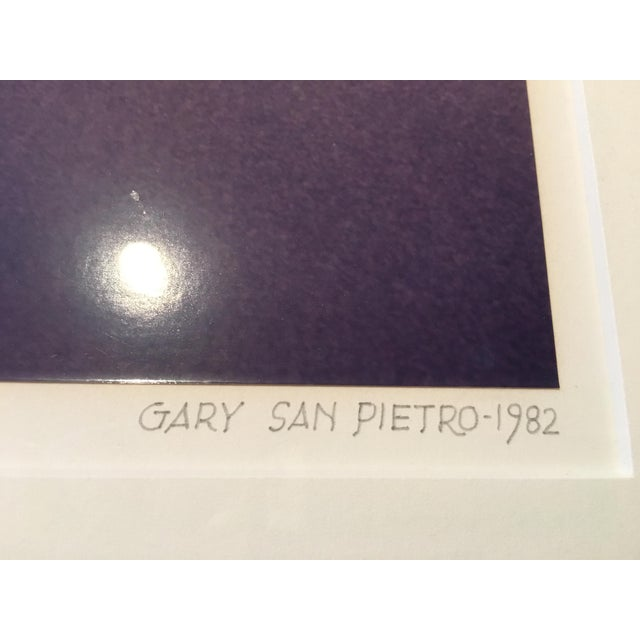 1980s 1980s Vintage Abstract Framed Photograph by Gary San Pietro For Sale - Image 5 of 7