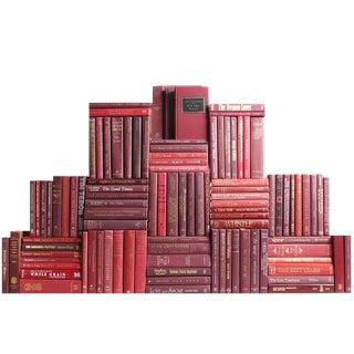 Modern Bordeaux Book Wall, S/100