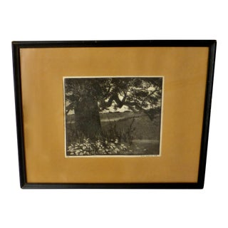 Black/White Print by Ann Usborne Signed Autumn Night