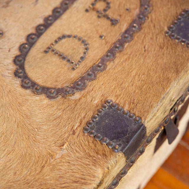 Antique Cowhide Trunk with Initials DP For Sale - Image 4 of 9
