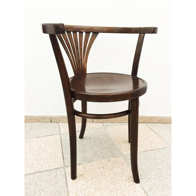 Antique armchair by Michael Thonet, 1900 For Sale - Image 6 of 7