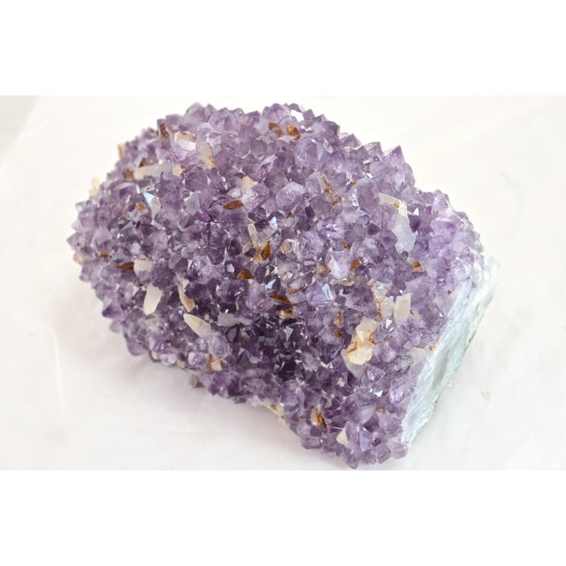 Natural Amethyst Blossom Mound For Sale - Image 4 of 8