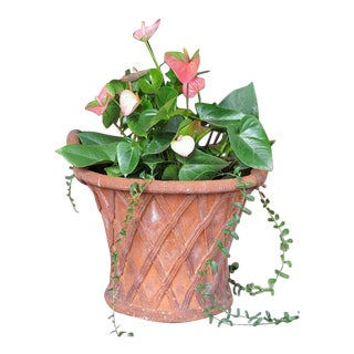 A Large-Scaled English Terracotta Basket Weave Garden Urn For Sale