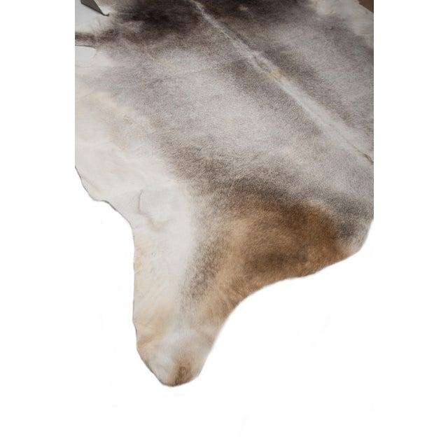 """2010s Authentic Rare Aydin Cowhide Rug, Gray, Handmade in Europe - 6'0""""x7'0"""" For Sale - Image 5 of 11"""