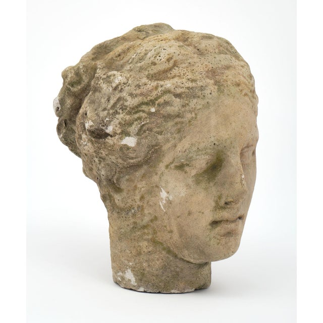 1910s Antique Stone Bust of Greek Goddess Athena For Sale - Image 5 of 10