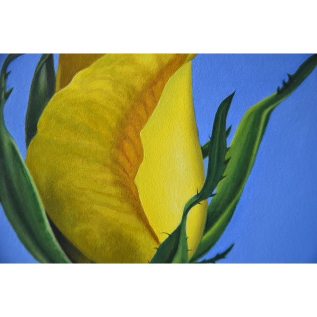 Original Oil Painting of Yellow Rose on Board Framed For Sale - Image 4 of 6