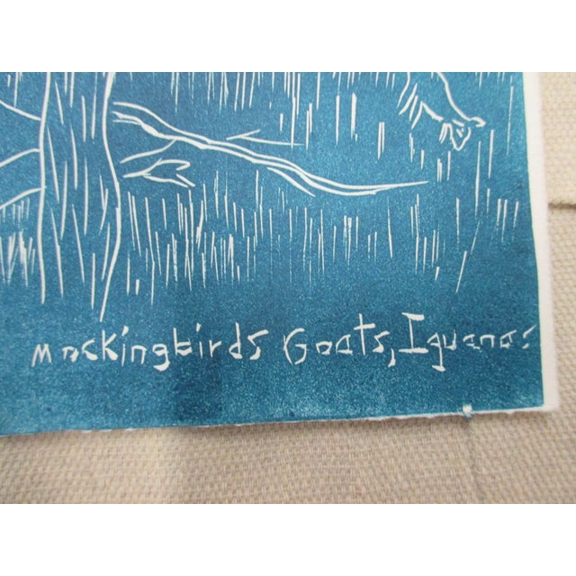 Vintage Lithograph in Blue and White About the Galapagos Mockingbirds, goats and iguanas at Dragon Hill Size: 8 x 12 x 0.03