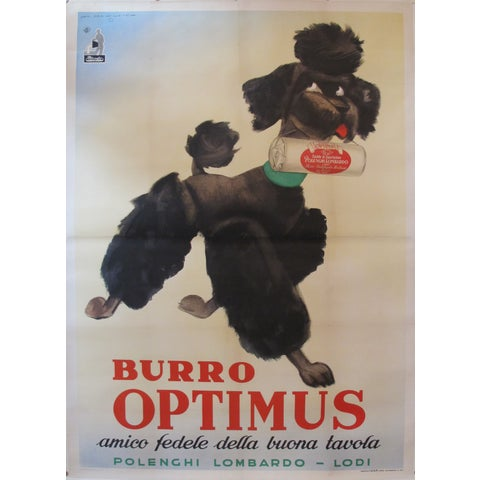 Image of Vintage Italian Poodle Poster