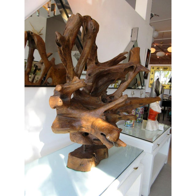 Impressive petrified organic formed wood sculpture. Made in the mid-20th century.