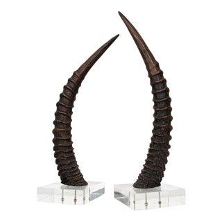 Vintage Faux Gazelle Horns on Lucite Bases - a Pair For Sale