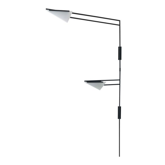 Wall Mounted Two Shade Swing Light For Sale