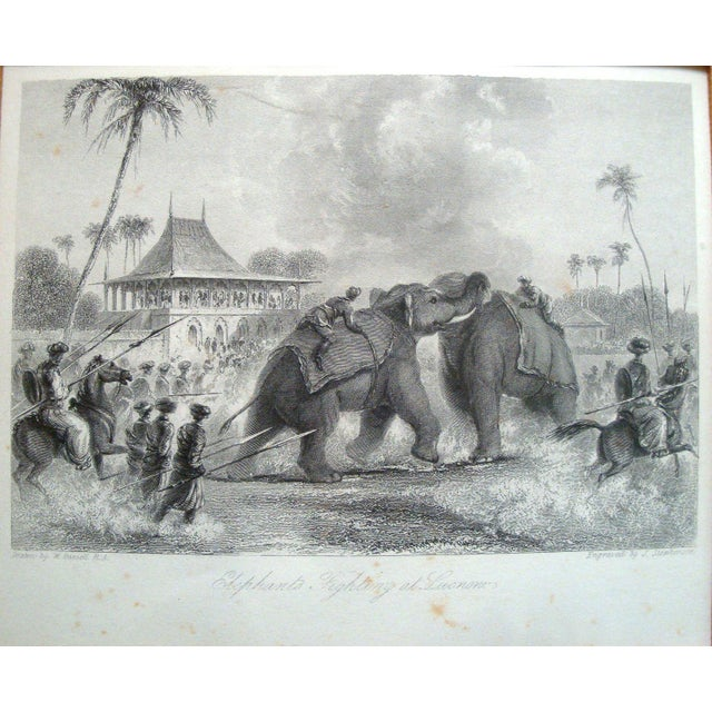 """This is an original 19th century antique engraving titled """"Elephants Fighting at Lucknow,"""" drawn by William Daniell, and..."""