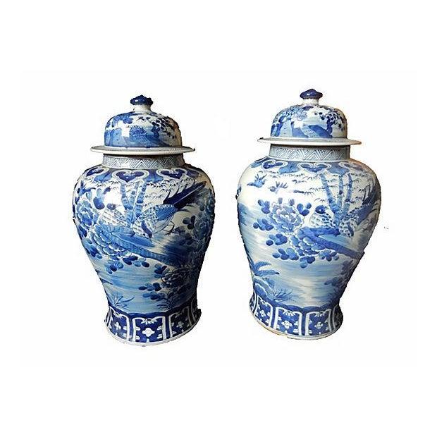 Blue & White Lidded Ginger jars, Pair - Image 6 of 6