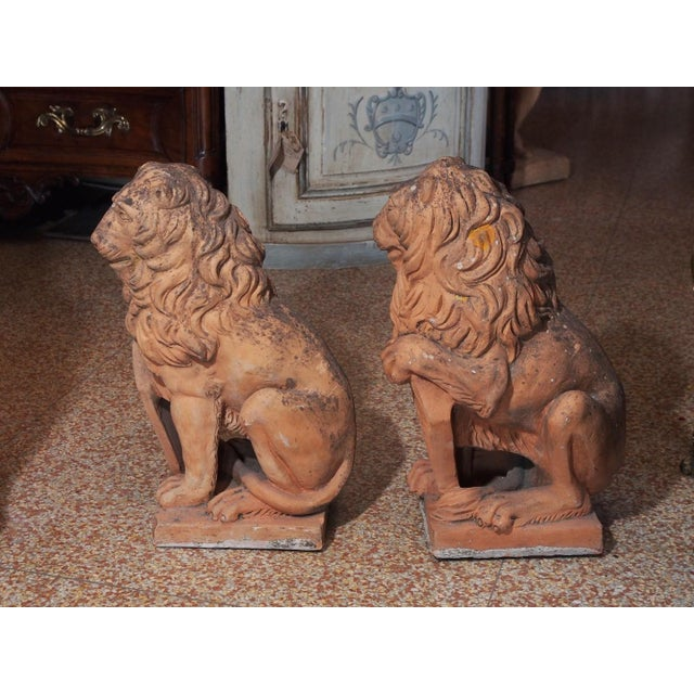 Italian Early 19th Century Italian Terra Cotta Lions - Pair For Sale - Image 3 of 9