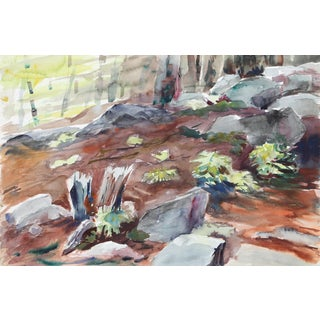 Eve Nethercott, Forest Floor (P1.27), Watercolor on Paper For Sale
