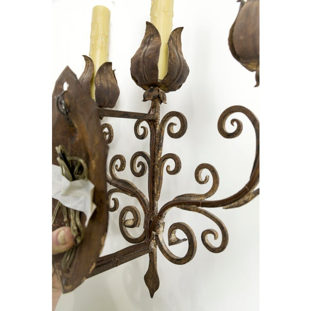 Iron Tulip Candelabra Sconce For Sale In San Francisco - Image 6 of 8
