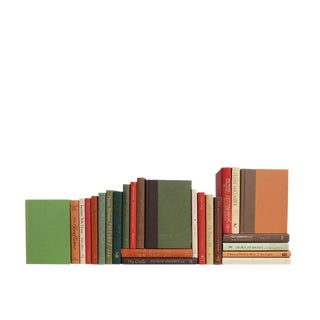 Modern Mini Earthtone Book Set, S/25 Custom Set For Sale