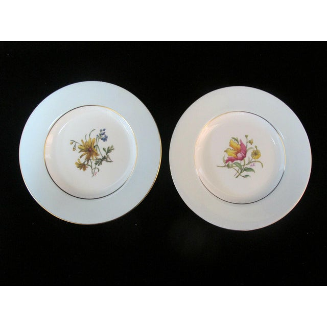 White Early 20th Century Minton Blue Gilt Painted Plates Signed Colclough Fox - Set of 12 For Sale - Image 8 of 10