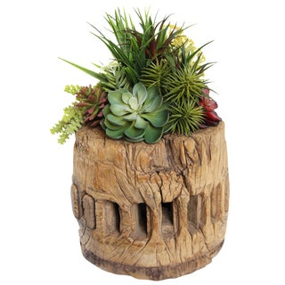 Old Wood Axel with Succulents
