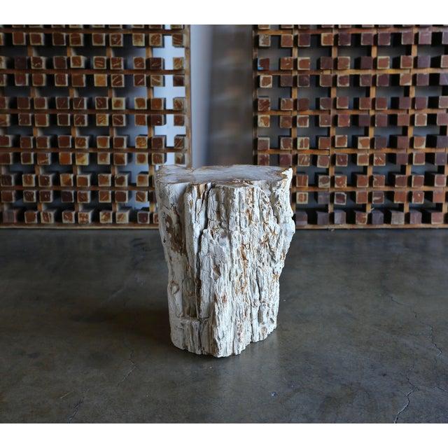 Petrified Wood Side Table or Stool.