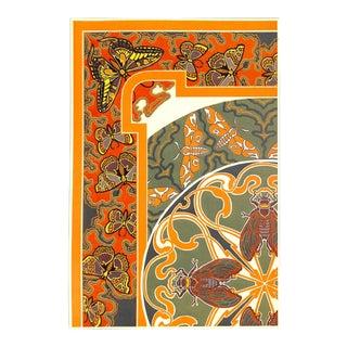 "Art Nouveau Insects, Cicadas Butterflies, Antique 1899, Matted 16 X 20"" For Sale"