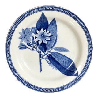 1820 English Pearlware Plate With Botanical Specimen in Underglaze Blue