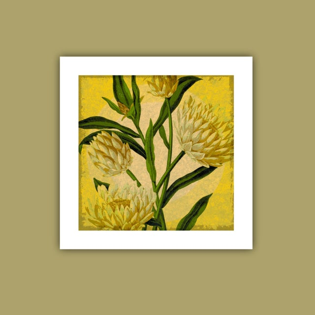 "Antique ""Yellow Floral"" Archival Print - Image 3 of 4"