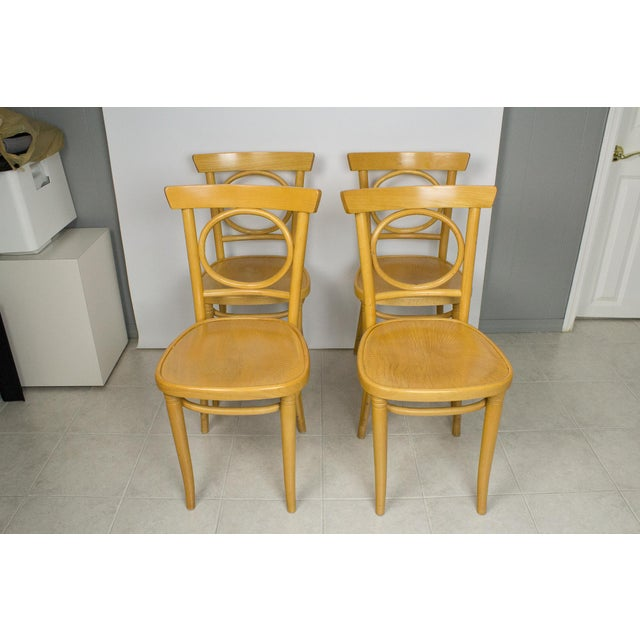 Radomsko Thonet Bentwood Cafe Chairs - Set of 4 For Sale - Image 10 of 10