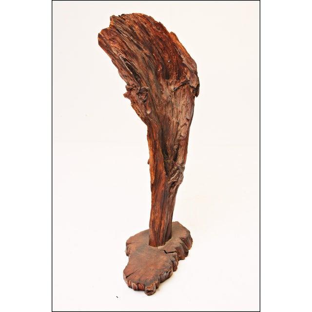 Vintage Driftwood Sculpture - Image 3 of 11