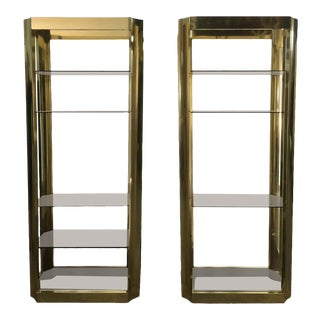 Brass Finish Anodized Aluminum Bookcases - a Paor For Sale