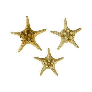 Vintage Natural Knobby Starfish - Set of 3