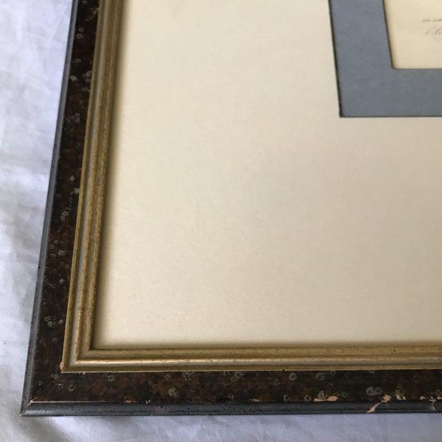 Custom Framed 1832 French Lizard Print - Image 4 of 8