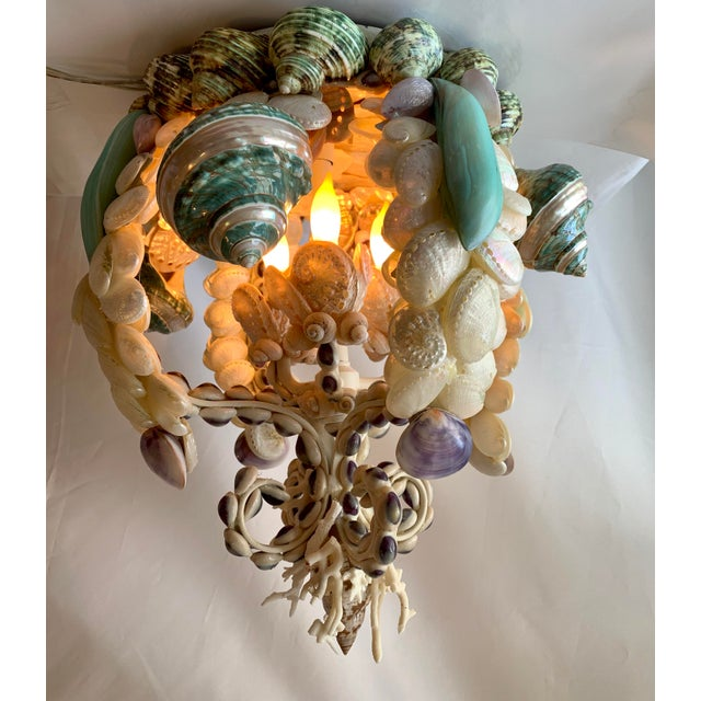 2020s Crown of Shells Chandelier For Sale - Image 5 of 12