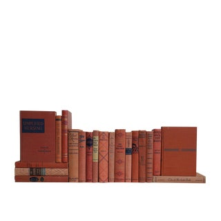 Midcentury Salmon & Blue : Set of Twenty Decorative Books