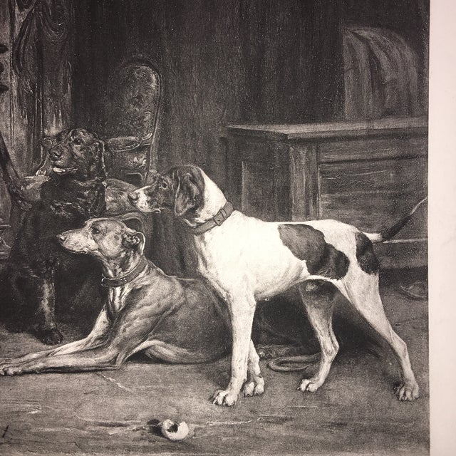 1883 Antique L E Lambert Dogs & Cat Lithograph Print For Sale In New York - Image 6 of 8