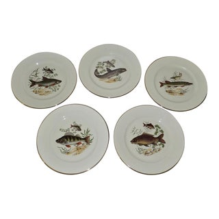 Rosenthal Selb Bahnhof Game Fish Dinner Plates - Set of 5 For Sale