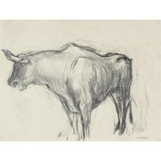 Mexican Bull in Graphite, Circa 1947 For Sale