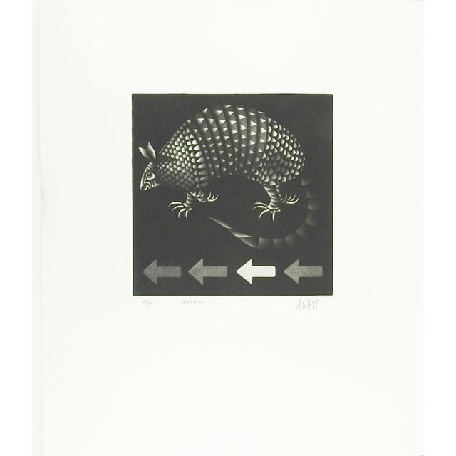 Circa 1960's Mezzotint on paper by Mario Avati (1921-2009) France. Signed, numbered 15/75 and titled Armadillo in pencil...