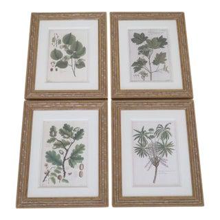 Set of 4 Trowbridge Custom Framed Botanical Prints For Sale