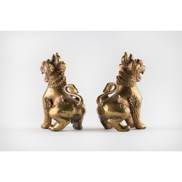 Solid Brass Thai Foo Dogs For Sale In Raleigh - Image 6 of 9