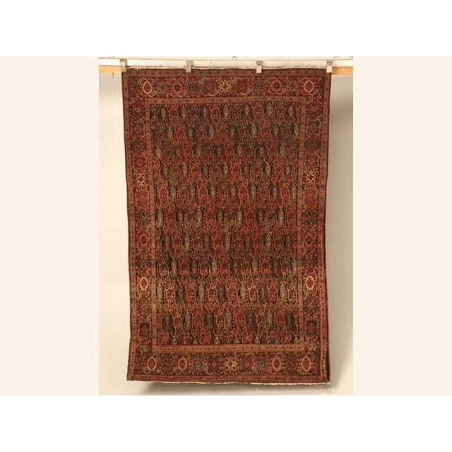 With its deep gorgeous coloring, this fine antique carpet screams opulence. In most any room of the home, this stellar...