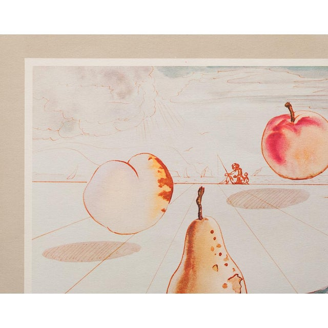 1950s 1955 Dali Fruits Original Period Lithograph From the Mrs. Albert D. Lasker Collection For Sale - Image 5 of 13