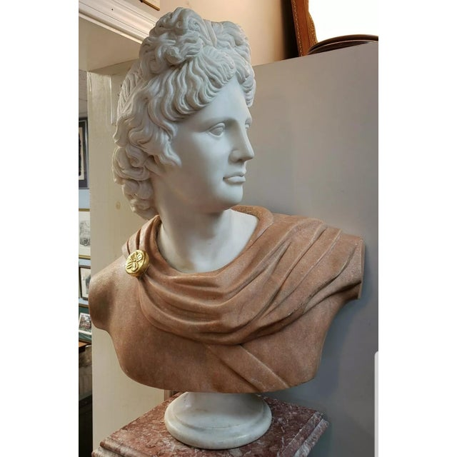 Up for sale is an Early 20th Century Italian Art Nouveau Carrara and Salmon Marble Apollo of Belvedere Bust on a Mid 20th...