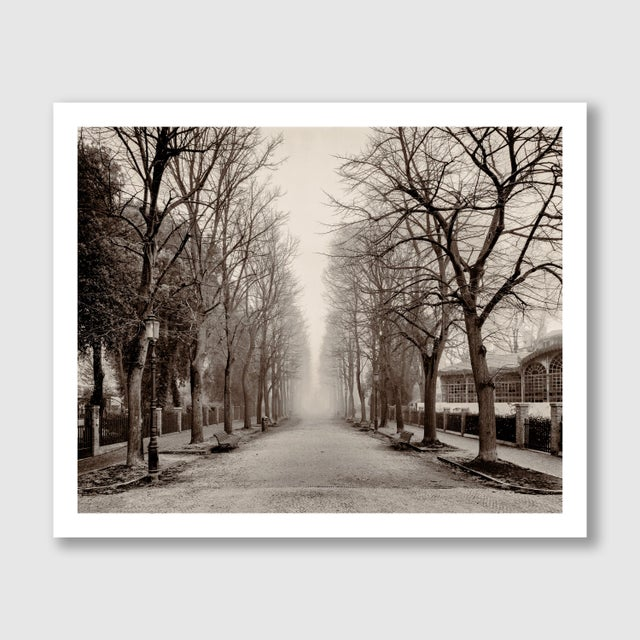 """Contemporary """"Castello Street, Venice"""" Contemporary Sepia Photograph by Guy Sargent For Sale - Image 3 of 5"""